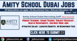 amity school dubai careers